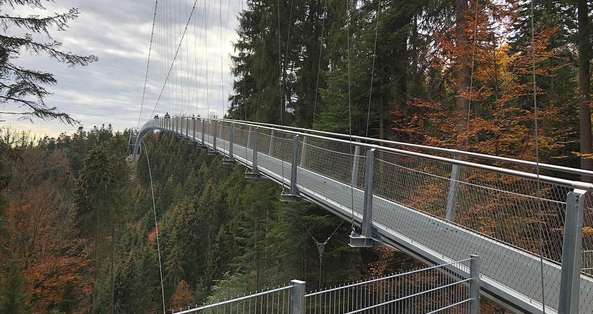 Falkner Maschinenbau Brücke Bad Wildbach